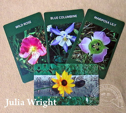 Wildflower cards by Julia Wright